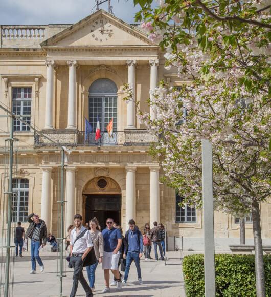 Université d'Avignon e de Pays de Vaucluse-©HOCQUEL_Alain