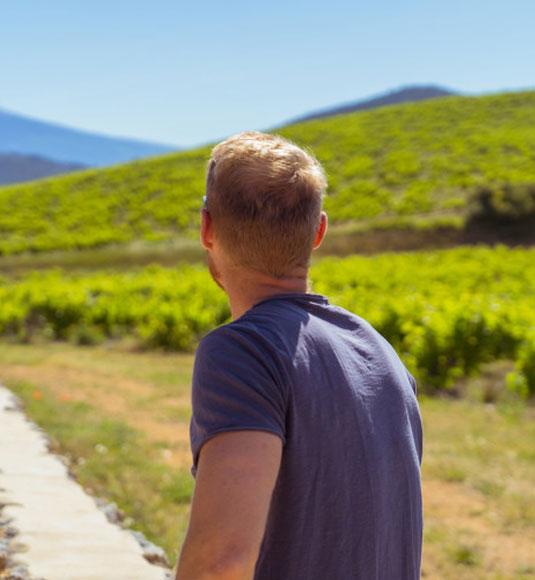 Vignobles du Vaucluse @ Planque M.